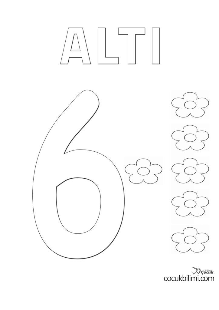 altı 6