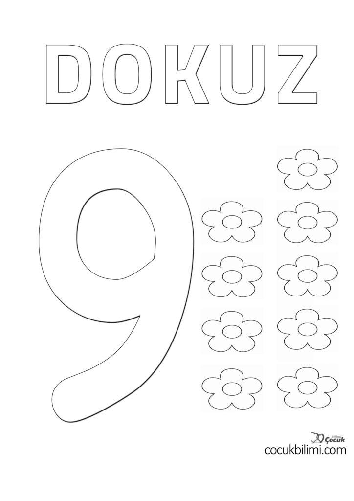 dokuz 9