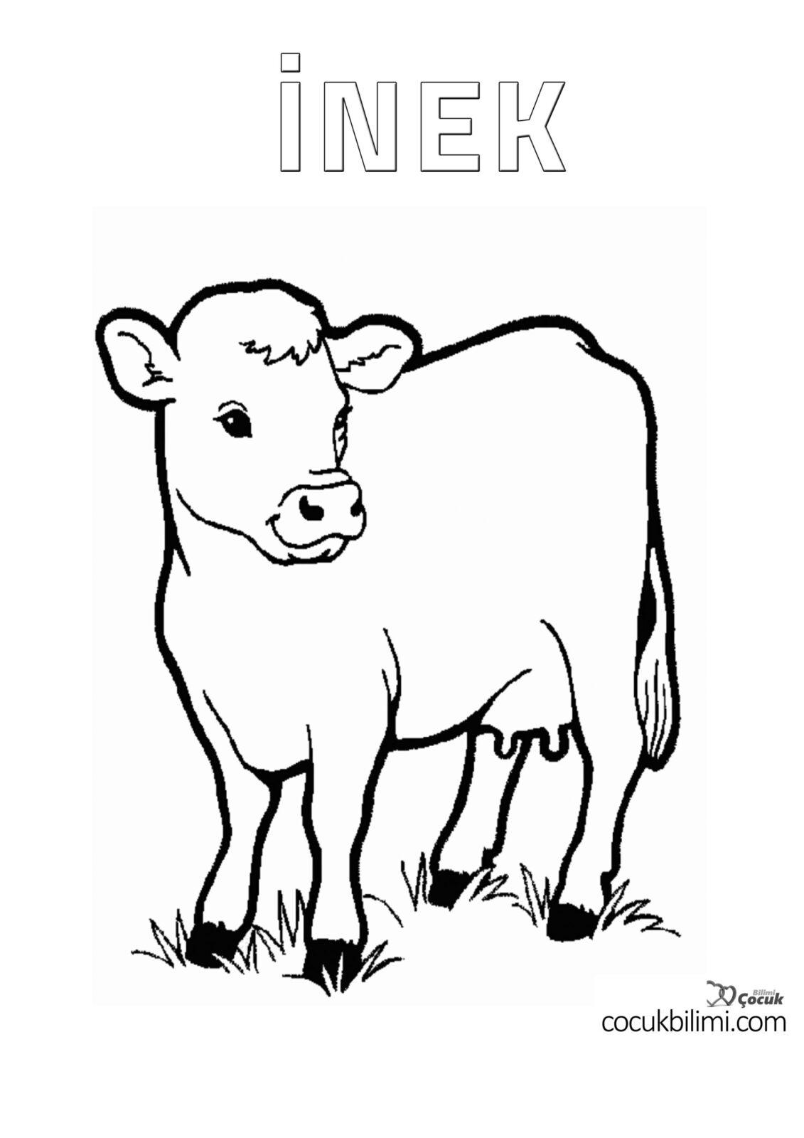 inek boyama sayfası