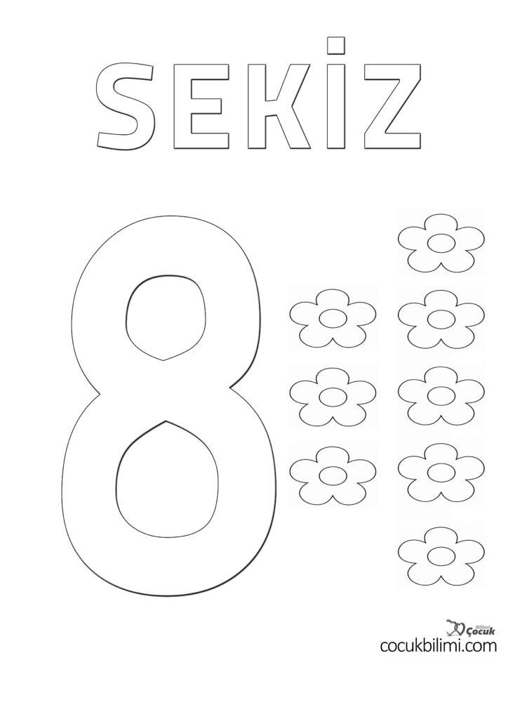 sekiz 8