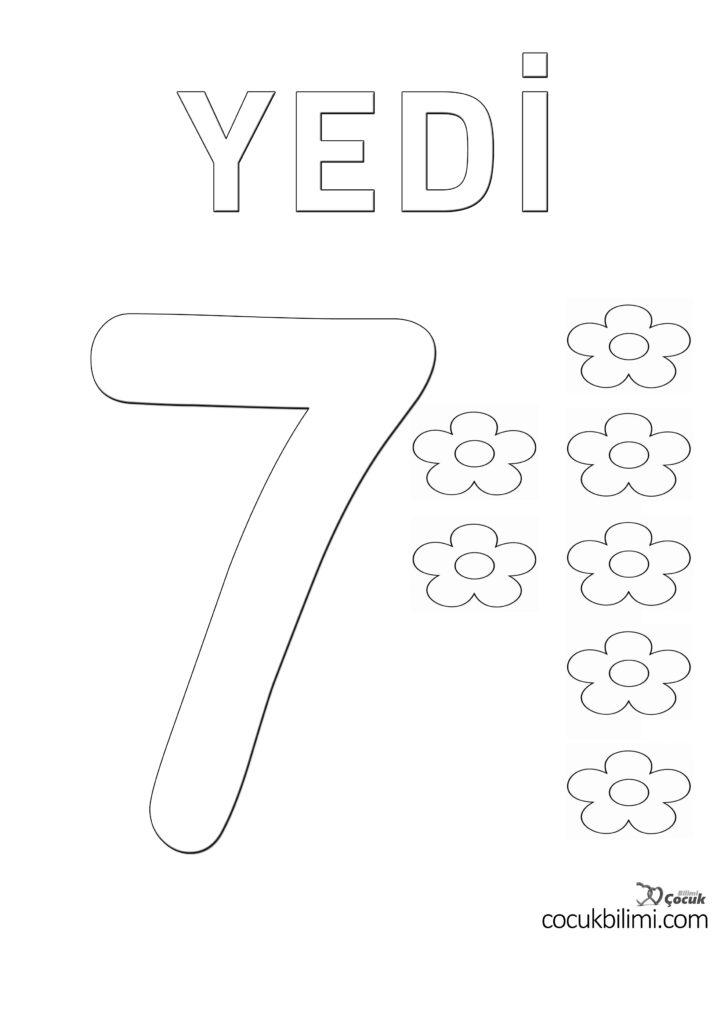 yedi 7