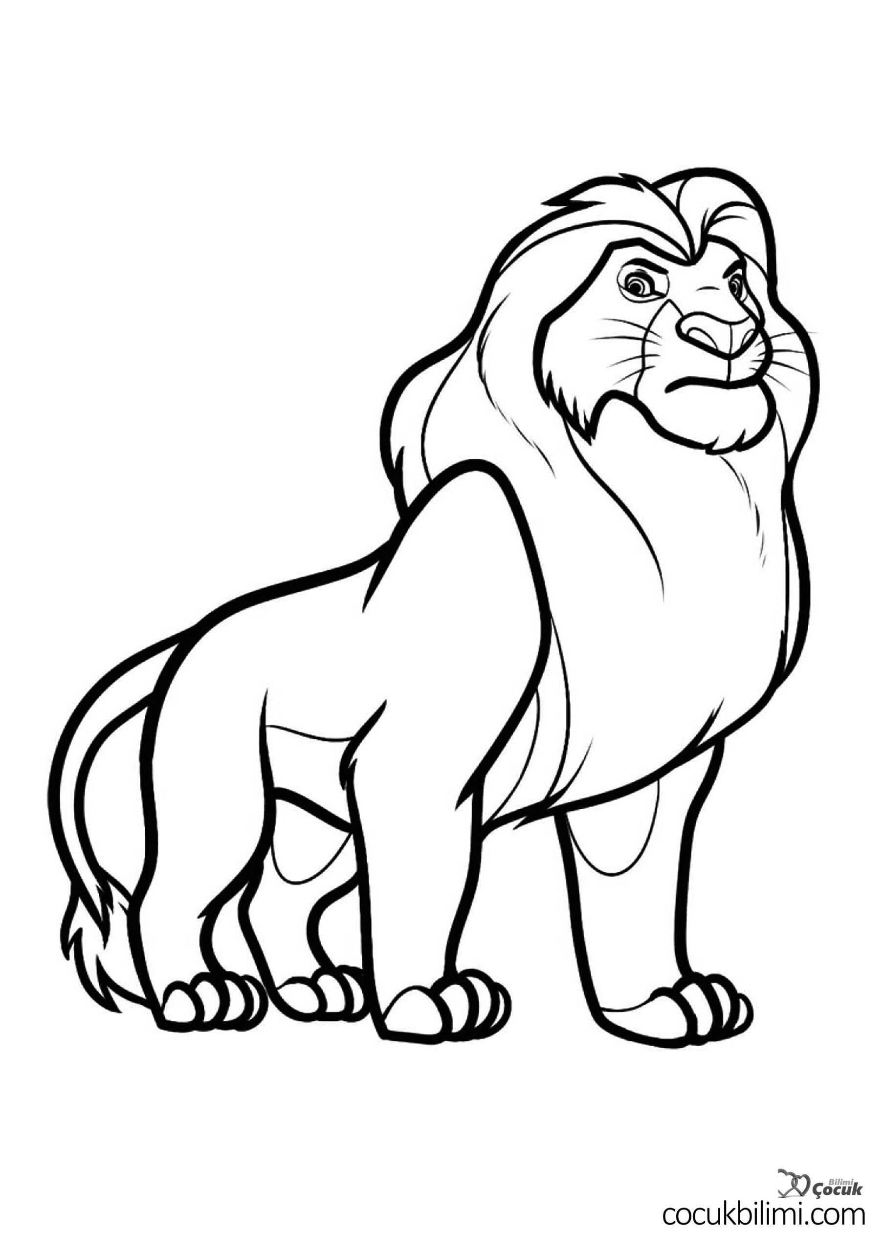 aslan-boyama