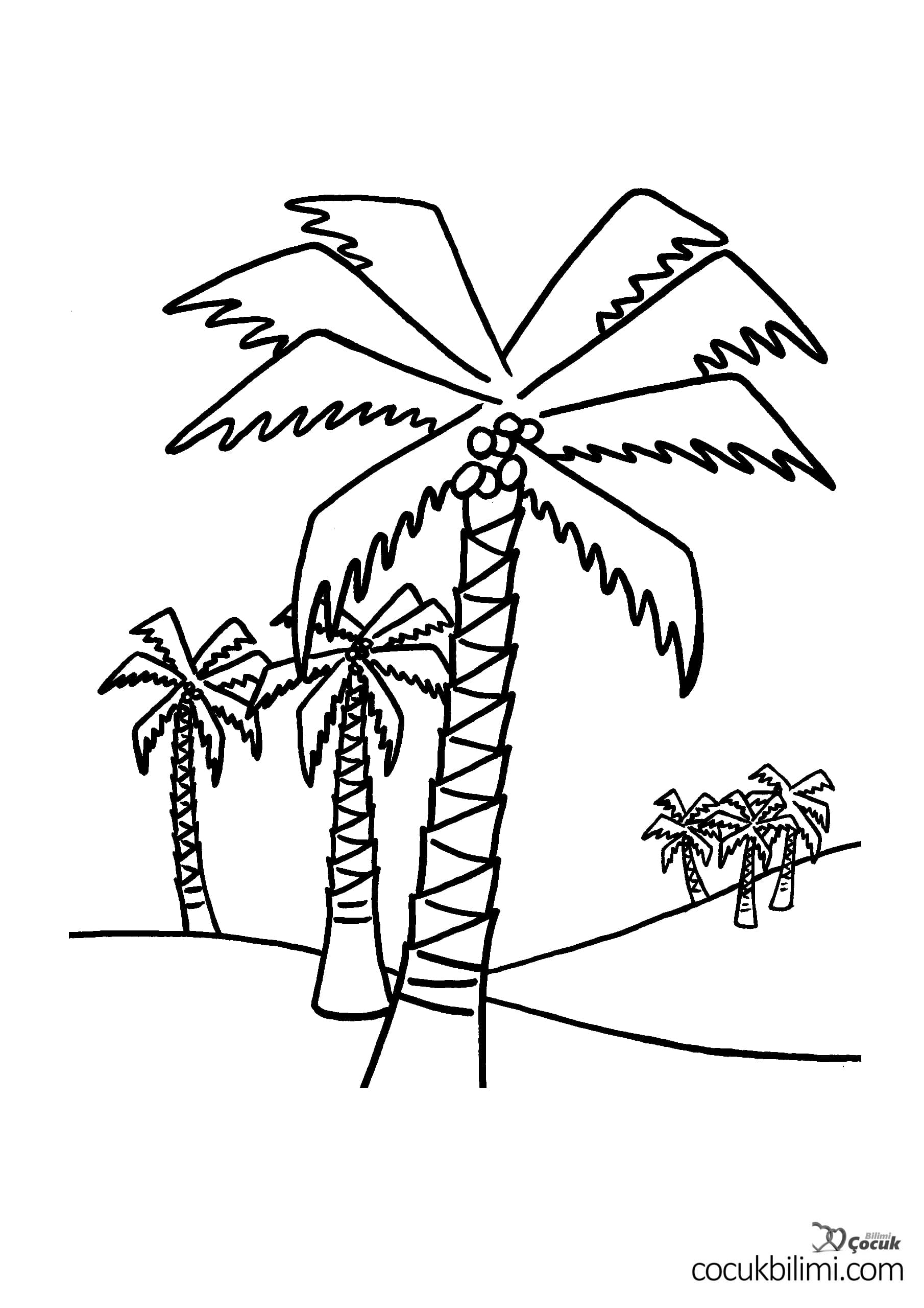 palmiye-boyama